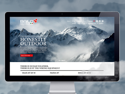 Bailo Homepage