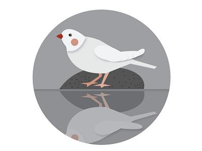 Bird illustration bird water icon graphic