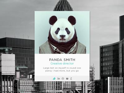 Panda profile interface social network