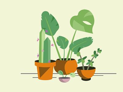 Plant family plant flat vector design illustration