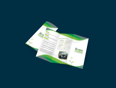 Brochure Design Services Primathink Tech brochure design vector ui illustration design branding
