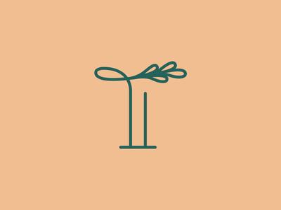 Today Flower Logomark Exploration