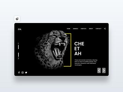 🦁 Cheetah Web Design hire follow like ecommerce designer site infadev concept website design