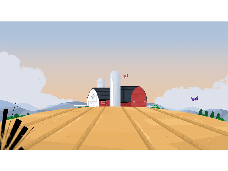 Oh, Canada! landscape farm environment design video styleframe photoshop illustration