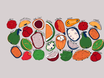 Exotic Fruit App Illustrations user experience design mobile app design fruit illustration illustrator illustration art exotic food fruit app design app illustration interface illustration user interface digital art illustration user experience design studio ui ux graphic design design