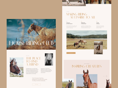 Horse Club Website webpage design photo website design website web interface web layout web marketing video horse horses web design web user experience interaction design studio interface ui ux graphic design design
