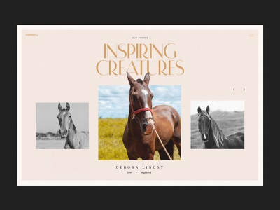 Horse Riding Club Website Page sports hobby animals photo web interface web marketing website website design horses riding web design design studio web user experience interaction interface ui ux graphic design design