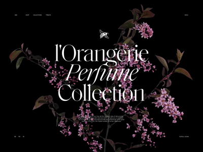 Perfume Website: Collection Page video motion graphics webpage design flowers perfumes website design website web design web user experience interaction design studio interface ui ux graphic design design