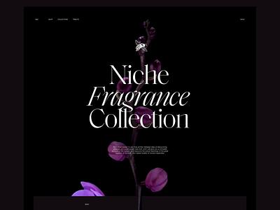 Perfume Ecommerce Website Design user interface website design animation website perfume video ecommerce web design web user experience interaction design studio interface ui ux graphic design design