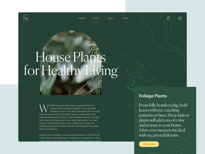 Gardening Company Website Design user interface web layout web page planting landscaping gardening plants ecommerce website design video web design web user experience interaction design studio interface ui ux graphic design design