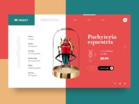 Bug Store Ecommerce Website