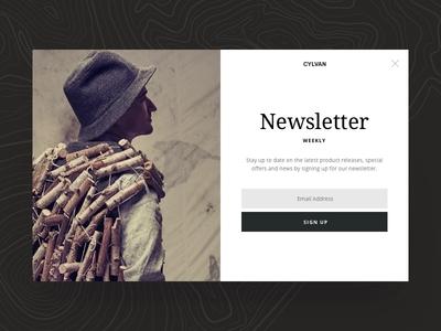 Sign-Up Overlay webdesign fashion design ui website web design responsive fomr online shop layout overlay sign up