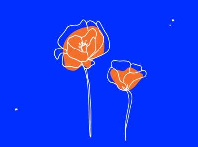 Poppies illustration poppy