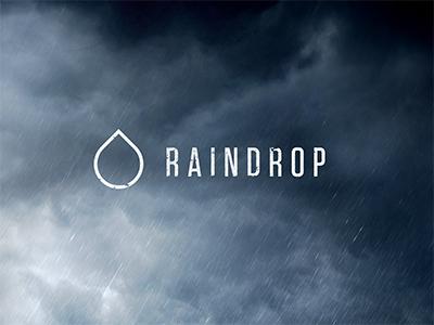 Raindrop Logo logo design minimal grunge subtle type identity visual game