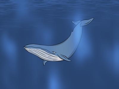 Whale...Whale...Whale...