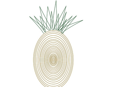Alternative pineapples 01