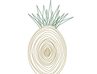 Alternative pineapples 02