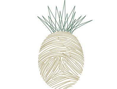Alternative pineapples 03