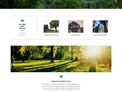 Great Scott Tree Care minmal vintage website rebrand
