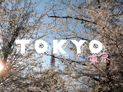 SAKURA SZN japanese hanami sakura cherry blossoms japan vector type typography travel travel photography illustration handlettering handletter hand drawn design asia