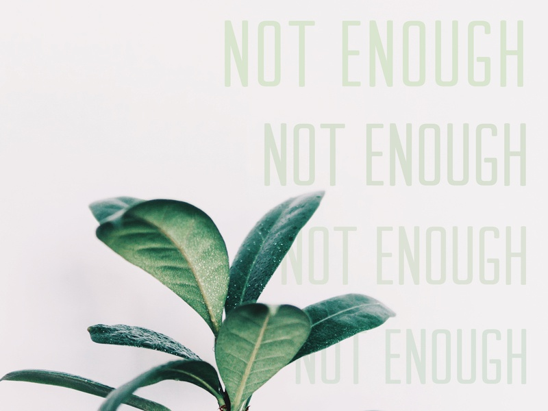 Not Enough more no enough plant nature foliage photography typography