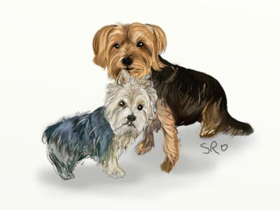Coco & Bailey