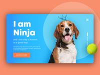 The Ninja Project Website