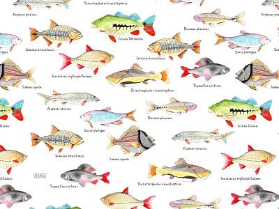 Fish print textiles design illustration pattern fashion textile animals watercolor pattern design print textile design nature fish