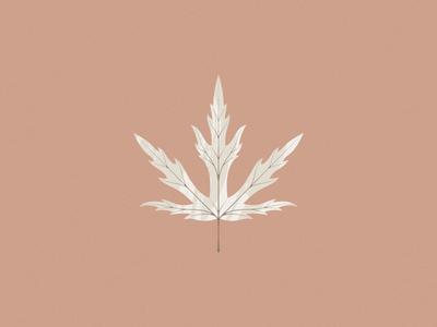 Leaf tree nature illustration