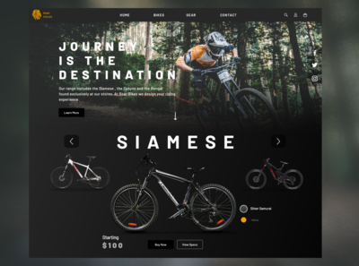 Roar Cycles Landing Page Concept