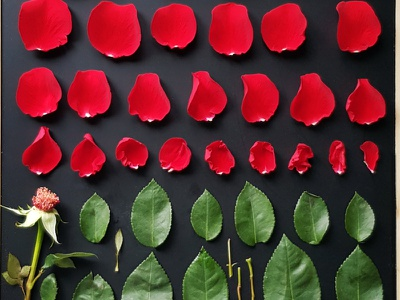Tetris photomontage minimalism poster picture design illustration collage photography art photo