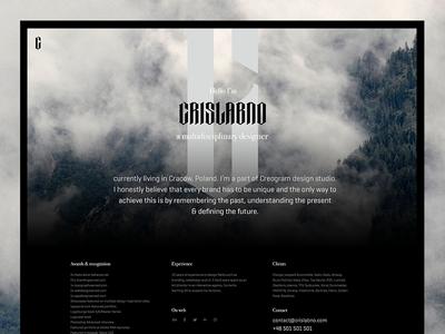 Personal micro-website designer design website www crislabno