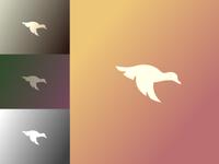 Duck Branding