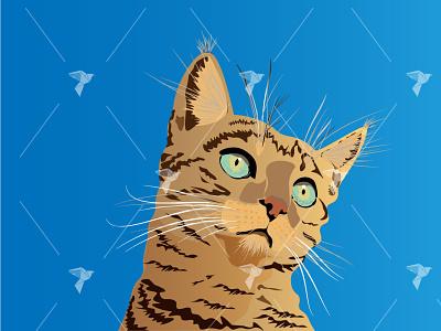 Flat Cat Realistic illustration drawing realistic pet feline cat illustration