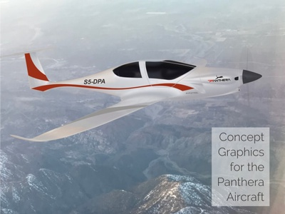 Panthera Concept Art, In Flight applied graphics aircraft vehicle graphics branding graphic design concept art