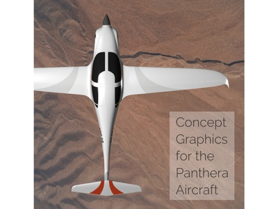 Panthera Concept Art, In Flight Top-Down View applied graphics aircraft vehicle graphics branding graphic design concept art