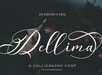 Dellima | Wedding Calligraphy Font type design font awesome handmade script font branding design hand lettering typeface font design calligraphy artist calligraphy logo calligraphy font calligraphy