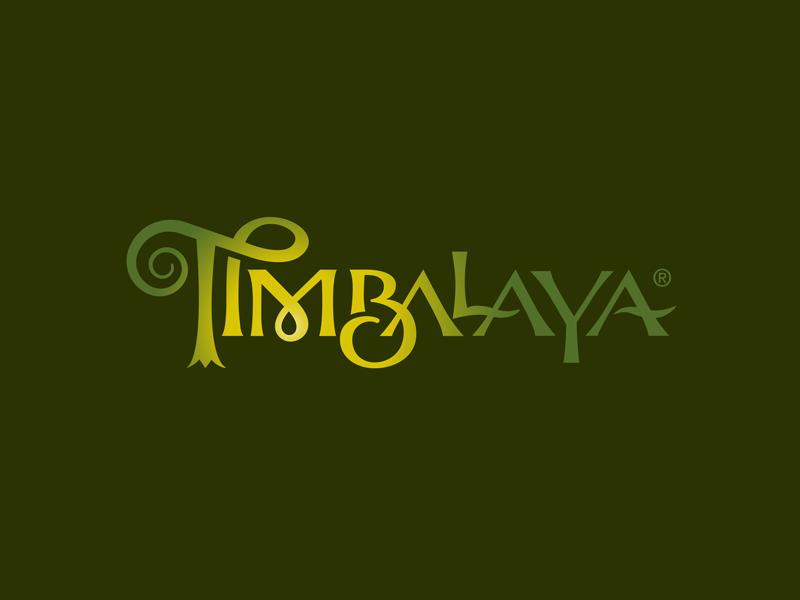 Timbalaya custom type outdoor play wizard magic vacation branding attraction theme park logo