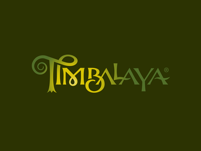 Timbalaya custom type outdoor play wizard magic vacation branding attraction theme park logo