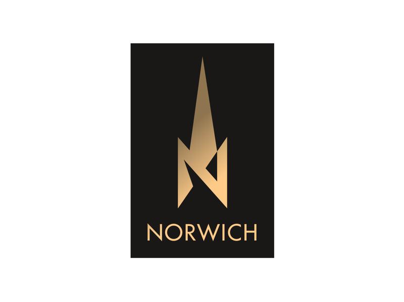 Norwich city vector illustrator illustration logo icon cathedral norwich