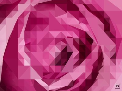 A triangulated rose clean pink rose photoshop illustration design