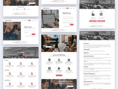 CIMB Niaga - UI API Portal Website (2018)