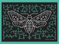 Death's Head Hawk Moth texture line lineart butterfly bug moth deaths head hawk moth illustration illustrator