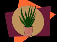 Abstract Aloe