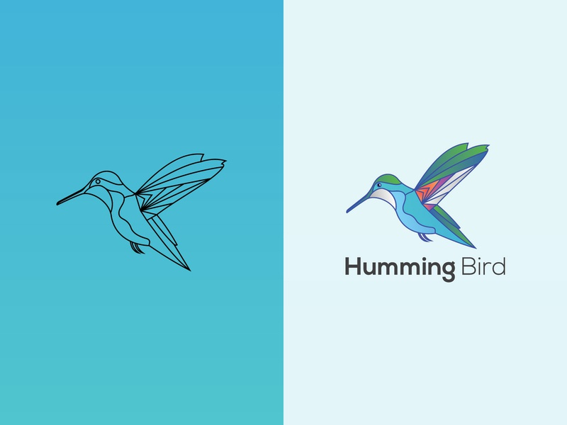 hummingbird hummingbird logodesign