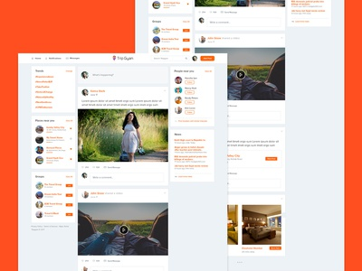 Tripgyan | Social Networking for Travelers | UI