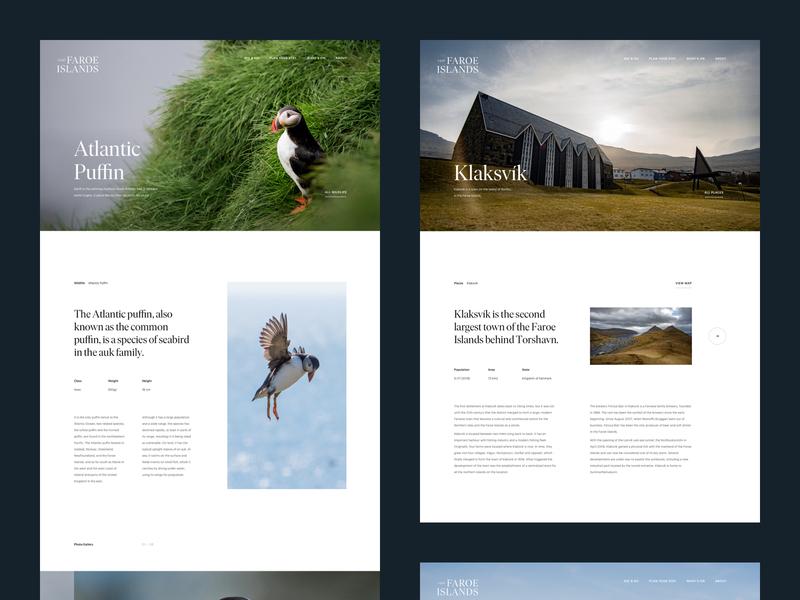 Visit Faroe Islands–Details outdoor hospitality grid web design webdesign hero magazine layout interface web planet clean serif bird animal minimal agency travel website nature