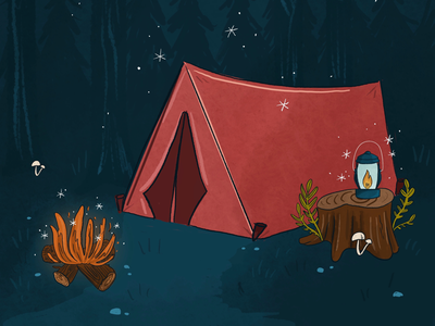 Camping under the stars outdoors star camp