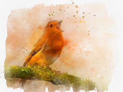 Wonder Watercolor Photoshop Action wonder watercolor action wonderful wonder action watercolor sketch watercolor painting watercolor clipart maker watercolor photoshop template photoshop brushes photoshop artwork photoshop addons photoshop action photoshop photo effect instant download graphicdesign gogivo digital painting digital illustration beautiful painting