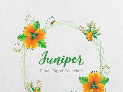 Juniper Floral Clipart Collection vector illustrations green vector flowers vector flower illustration nature illustration juniper instantdownload greenery gogivo flower wreaths flowerillustration flower graphics flower clipart flower and birds floral patterns floral design floral clipart vector illustration beautiful wreath clipart